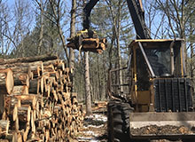 Muskegon Habitat Management